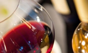 degustazione_vino