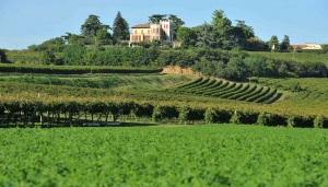 Vicenza-DOC-villa