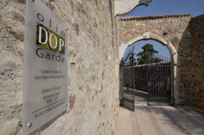 olio dop Garda