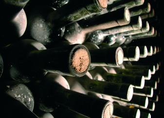 Gourmet_Wine - Vino_vino-boce
